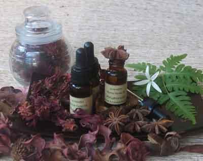 herbal facial oil PELEMBAB WAJAH DARI MINYAK NABATI ALAMI LOTION ANTIOKSIDAN VITAMIN MINERAL