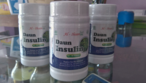 Harga Kapsul Daun Insulin Obat Diabetes Isi 60 Kapsul
