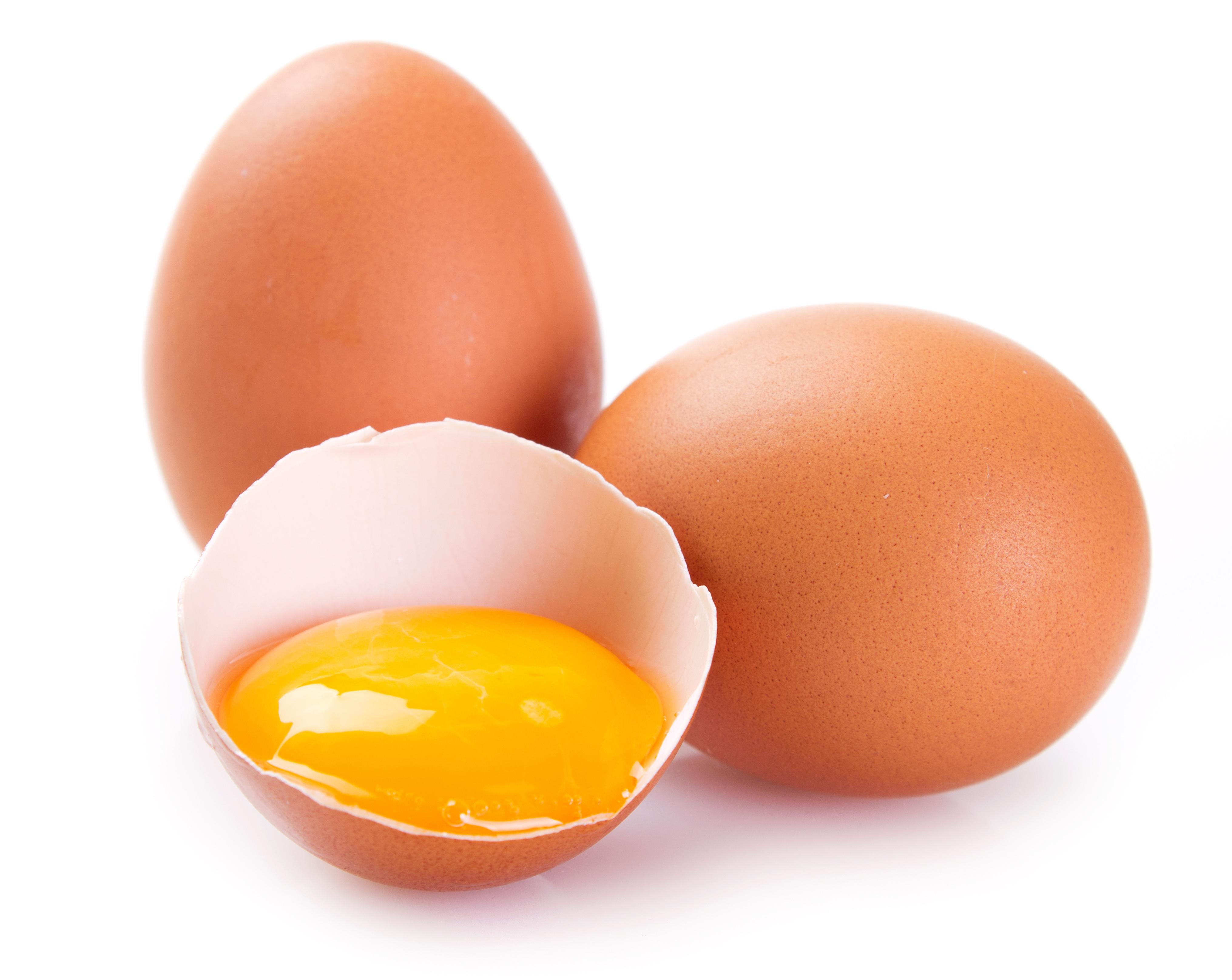12 Manfaat Telur Untuk Kesehatan Tubuh Yang Luar Biasa